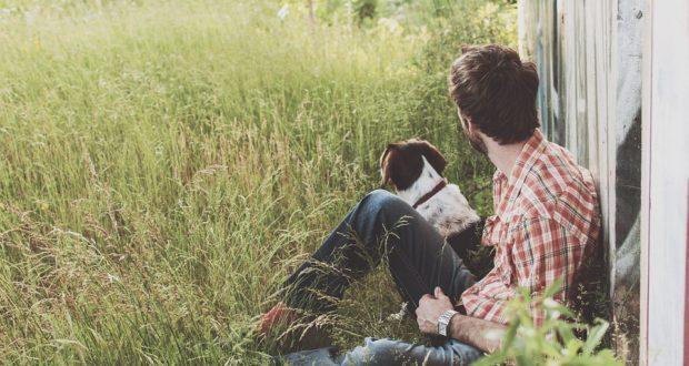 10 úsměvných zákonů o zvířatech