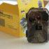 Fotopasti jsou skvělým pomocníkem na ochranu majetku