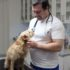 Rozhovor s veterinářem – MVDr. Martin Šmelhaus