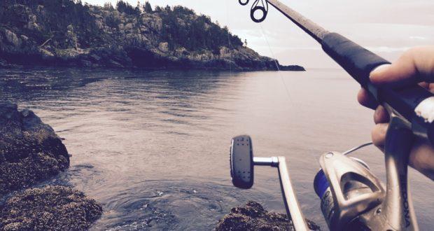 Rybářské pruty a další potřeby pro začínající rybáře i rybářské bardy